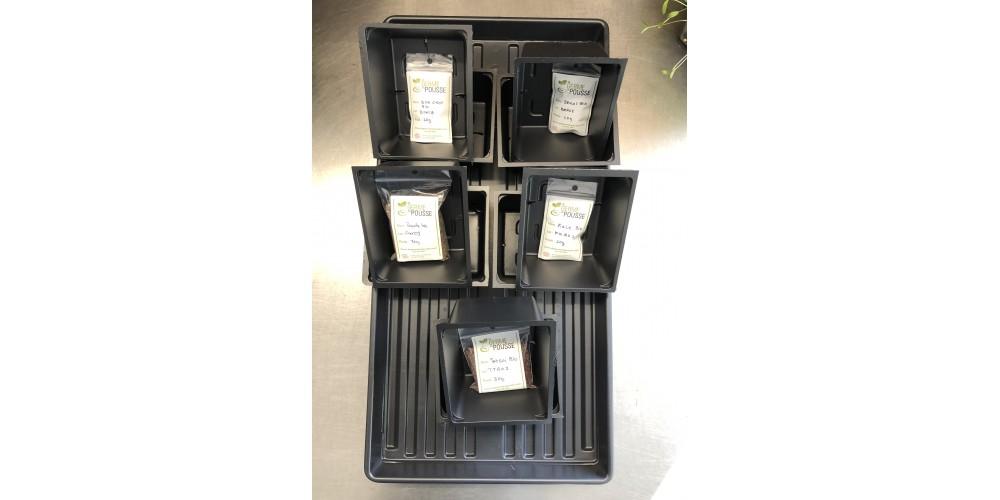 Kit de départ pour faire 5 micro-pousses, 5 semences faciles