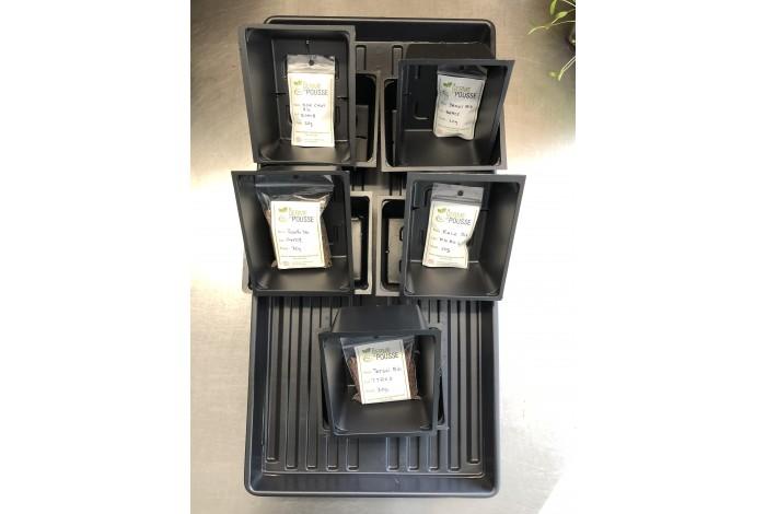 Kit de départ pour micropousse avec 5 semences facile