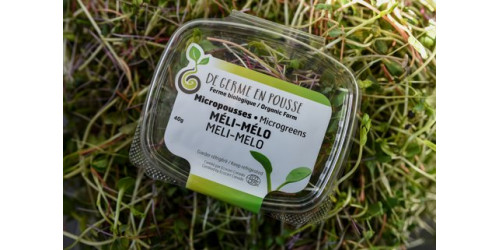 Meli-Melo Mixture shoots and microgreens Medley 250g