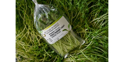 Snow pea shoots for salads, 250g size