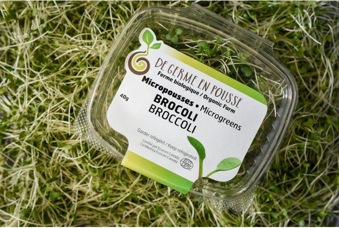 Micropousses de brocoli, coupées, format 40g